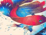 MGI-Jetvarnish-3D-Evo-Muster-Fisch