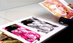 Ricoh Ink Estimator Tool Tintenverbrauch berechnen