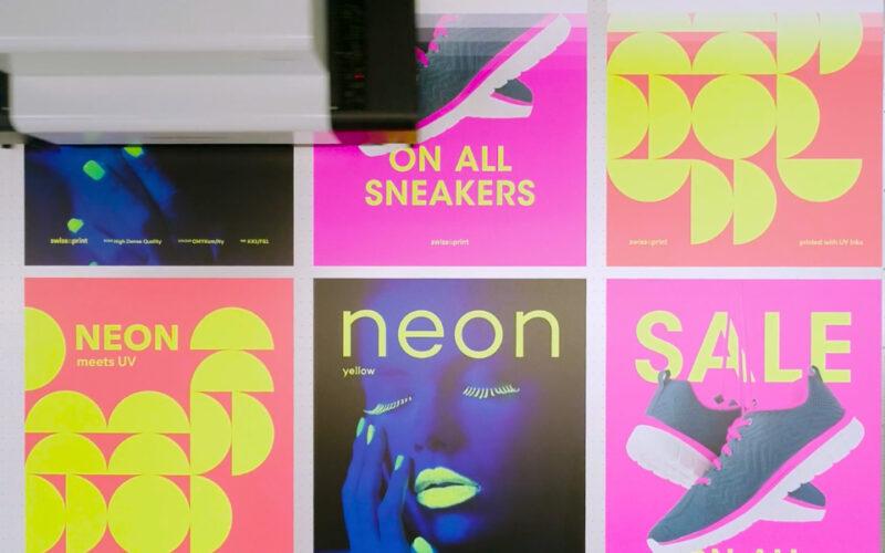 swissQprint Produktmanager Neon 3